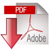 download pdf copy